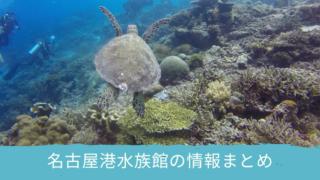 名古屋港水族館情報